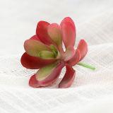 Plante artificielle de succulents pour décoration maison