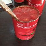 Las conservas de tomates pelados enteros de tomate en salsa de tomate