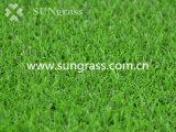 [15مّ] عشب أخيرة اصطناعيّة لأنّ يرتّب مع إرتفاع - كثافة