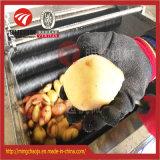 Máquina de casca raspando da máquina da cenoura do aço inoxidável