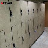 De Compacte Gelamineerde HPL Amerikaanse Kast van twee Kleur, Z-Type HPL SPA de Kast van de Muur van de Garderobe, Kast HPL
