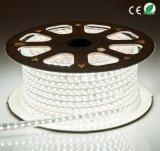 ETLの110V SMD5050 60LED/M LEDの滑走路端燈の屋外及び屋内防水Deorative LEDロープライト