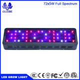 LED가 가벼운 가득 차있는 Specturm를 증가하는 Glebe 100W/200W/300W/600W 두 배 칩은 온실 Hydroponic 실내 플랜트 Veg 및 꽃을%s 램프를 증가한다