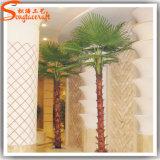 Palma artificiale di plastica della vetroresina della pianta della decorazione dell'hotel