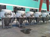 Vendita calda 200L del serbatoio di putrefazione della birra