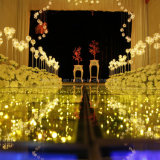 Sternenklare Dekoration-Lichter des Himmel-LED für Weihnachten 2017