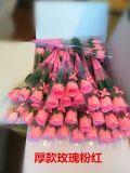 Holiday Rose Flower