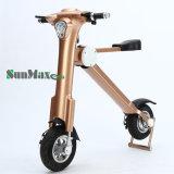 販売のための最もよい品質の安い電気バイク