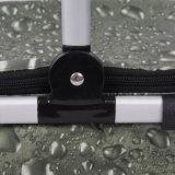 Новый складной относящий к окружающей среде защитный мешок охладителя ткани Оксфорд типа пикника