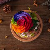 Flor preservada para el regalo de la decoración del día de fiesta