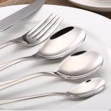 Европейский Cutlery типа установил для подарка дела