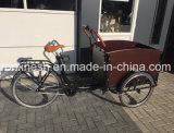 Pedal oder 250With350With500W Elektrische Bakfiets/elektrische Ladung Trike/der Ladung-E Rad-Ladung-Fahrrad/Transport Fahrrad-/Familien-der Ladung-Tricycle/3 Trike W Haube und Deckel