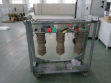 Zw32-12 Type Hv Outdoor Vacuum Circuit Breaker