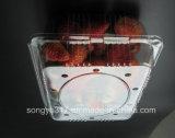 коробка плодоовощ клубники 1000g устранимая прозрачная