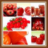 Auszug-Lykopen der Tomate-100%Natural für Nahrungsmittel und Ergänzung