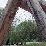 Tela metálica galvanizada hexagonal de Sailin para la granja de pollo