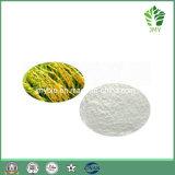 Qualitäts-Reis-Kleie-Auszug-ferulische Säure 98%