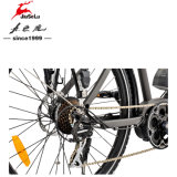"7 pignons 26"" Châssis en alliage aluminium 250W 36V E-Bike"