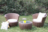 Meubles en rotin de loisirs de plein air Table-23