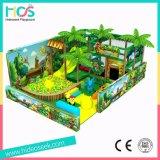ジャングルの主題の小さく安いセリウムの標準屋内運動場
