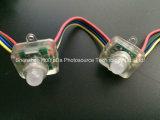 Luz programável do diodo emissor de luz do RGB da luz da fonte de ponto do diodo emissor de luz do produto 1LEDs de Nex
