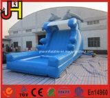 El delfín inflable de la diapositiva del delfín inflable seca la diapositiva