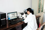 Microscópio metalográfico ereto com dispositivo de polarização