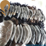 Accettare il Toupee svizzero personalizzato della parte superiore del merletto per il maschio