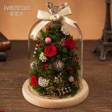 100% naturel boîte cadeau pour anniversaire fleurs Décoration de Noël