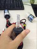 Fuente de la fábrica de HID Xenon para el coche 12V 35W bombilla halógena con base de metal