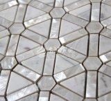 Zoetwater Shell en het Marmeren Wit van het Mozaïek