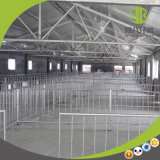 DIP caliente granja porcina de galvanización Jabalí Caja cajas de engorde de cerdos de tubo de gestación