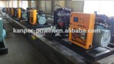 German Tesla Madeinchina Gas Genset / Biogas Power Electric Generator