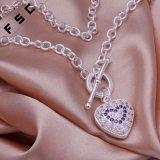 Halsband van de Tegenhanger van het Hart van het Zirkoon van de Toebehoren van de manier de Romantische voor Meisje