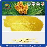 Suplemento del polen del pino de las muestras libres de la fuente de la fábrica/tinte del polen del pino/polvo del extracto del polen del pino