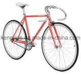 700c 최신 판매 싼 단 하나 속도 조정 기어 자전거는 Sy-Fx70013를 자전거를 탄다