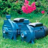 Selbstansaugende Absaugung-elektrische Wasser-Pumpe des Roheisen-TPS