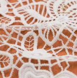 Merletto indiano del collare del merletto della guipure del tessuto del ricamo degli accessori dell'indumento