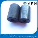 Anelli sinterizzati di ceramica del magnete di /Motor del magnete del magnete permanente del ferrito