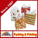 Bolsa de papel de regalo (3215)