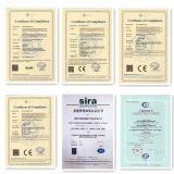 12V100ah Gel Battery con CE Certificate