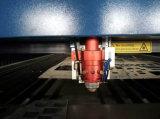 Tagliatrice del metallo e del metalloide del laser del CO2 con il fuoco in tensione