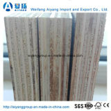 Bintangor/Okoume enfrentan los álamos comercial básico para la decoración y muebles de madera contrachapada