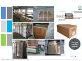 Ecksektor-Tür-Glasdusche-Einschließung (BLS-9827)