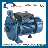 Wedo 0.55kw/0.75HP 원심 수도 펌프 (SCM-42)
