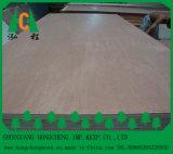 China enfrenta contrachapado de madera Venner comercial con el mejor precio