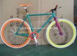 자전거, 궤도 자전거 SR-GW24가 700c에 의하여
