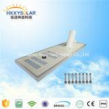La qualité 100W a intégré l'éclairage solaire personnalisé solaire de réverbère de DEL