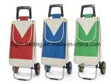 Carrello di acquisto pieghevole per il supermercato con 2 rotelle