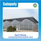 農業のための高品質のプラスチックフィルムの温室
